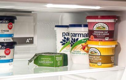Common Types of Refrigerator Repairs