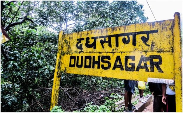 Dudhsagar waterfalls Goa