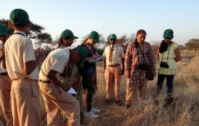 Top 7 Institutes in India for Studying Wildlife Courses